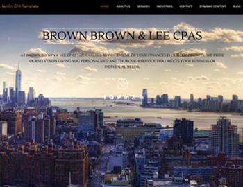 Hamlin CPA WordPress Template