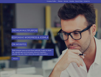 Industry CPA Website Template