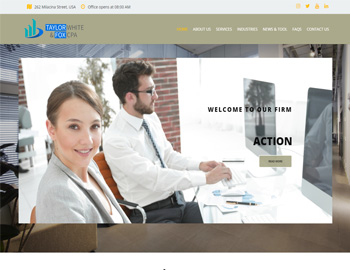 Odessa CPA WordPress Template